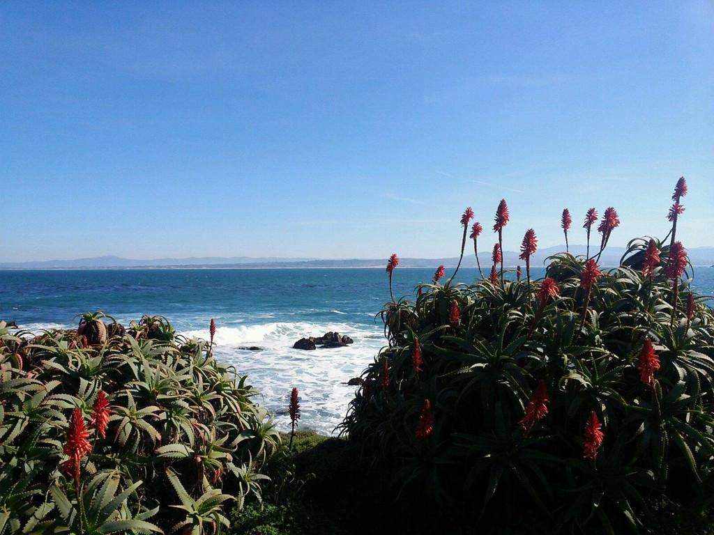 私人海滩,随便拍一张,即做屏保.