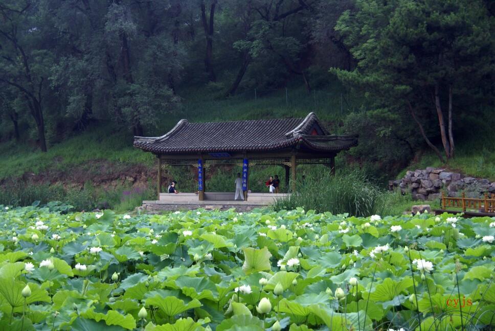 承德避暑山庄又名承德离宫或热河行宫,当地人俗称山庄。它是清朝皇帝的夏宫,始建于康熙年,建成于乾隆年,历时89年,总占地 564 公顷。山庄地貌总体为西北山区,东北平原草原区,东南湖区,享有中国地理地貌缩影的盛誉。山庄拥有众多群体的历史文化遗产,与北京的颐和园,苏州的拙政园,苏州的留园,并称中国的四大名园。 承德四季分明,属温带大陆性季风型山地气候,山庄四季同景观、景色各相异,季节性风光特色突出。以下是近几年拍的部分春夏秋冬的山庄。
