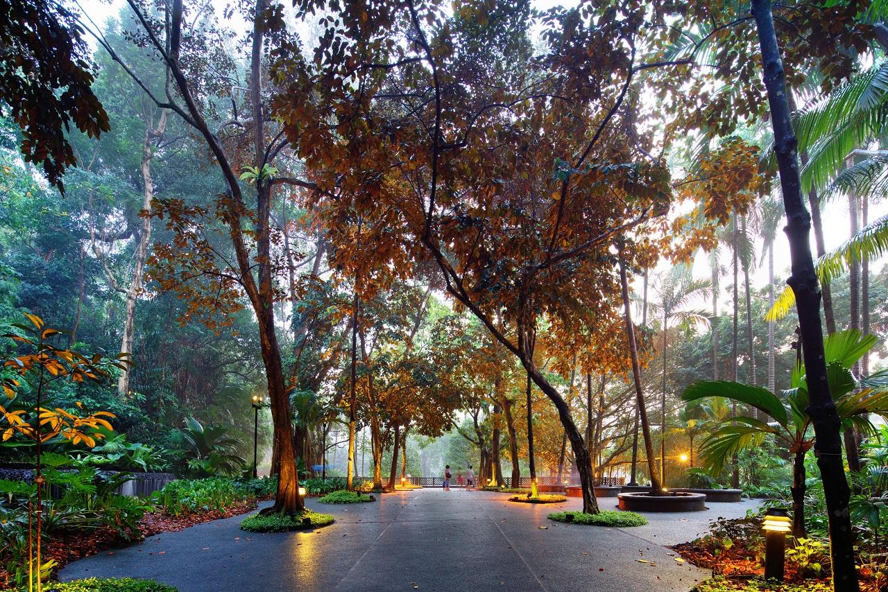 新加坡植物园开放于1859年.