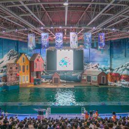 曲江游艇公园3D海洋体验馆景点,曲江海洋馆,位旅游攻略错觉图片
