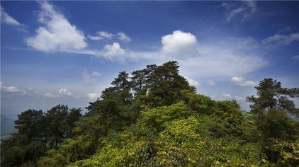圣灯山森林公园