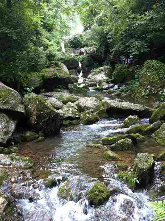 一弯栈道隐藏在青翠之后,溪涧之上,也是坐索道所体会不到的美丽,我们