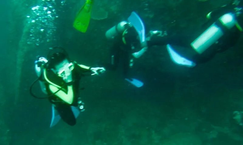 海底的世界依然美丽动人,但已没有昔日惊艳的感觉,潜玩的兴趣顿减