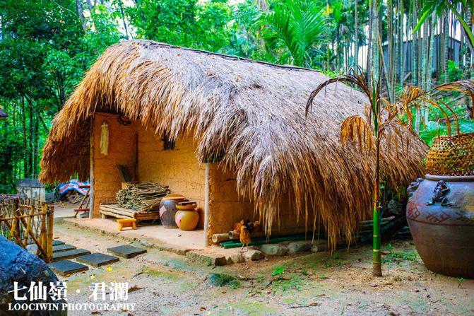 于热带雨林的热泉