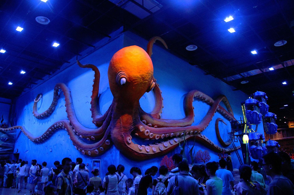 壁纸 海底 海底世界 海洋馆 水族馆 1024_682