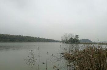 后官湖湿地公园门票,武汉后官湖湿地公园攻略 地址 图片 门票价格图片 10936 350x230