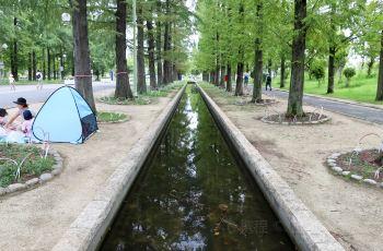 花博纪念公园鹤见绿地