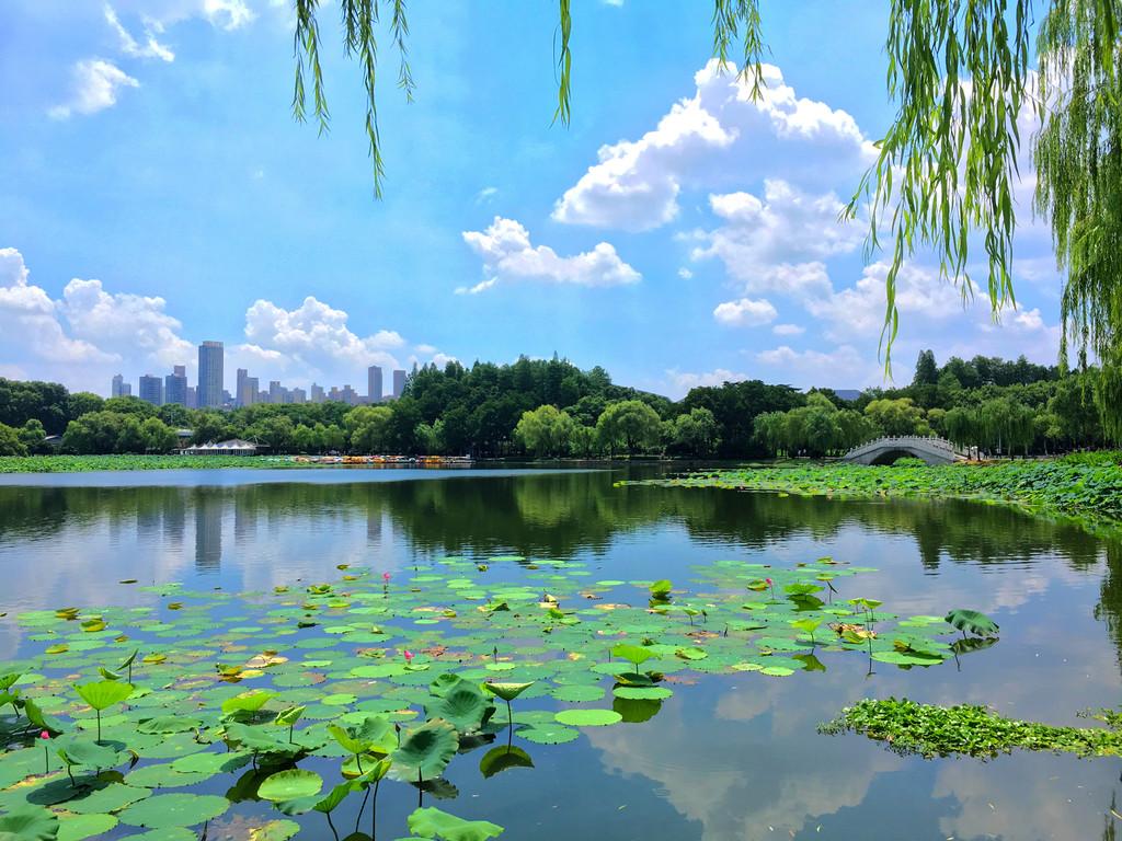 蓝天白云下的国家五a级武汉东湖风景区
