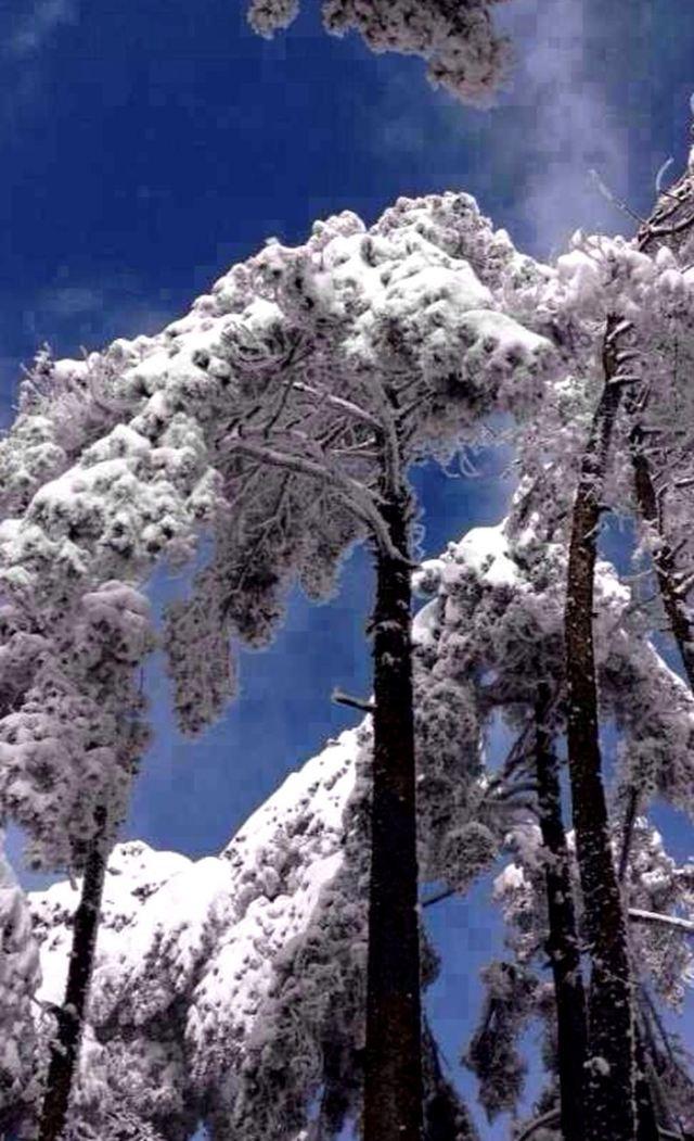 冬季风景简单手绘图