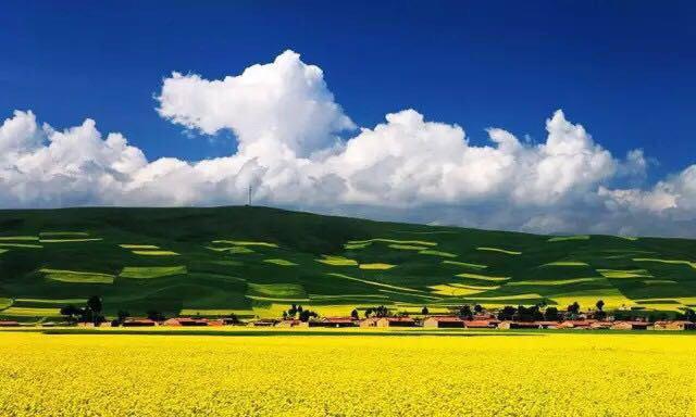 青海省海北州门源