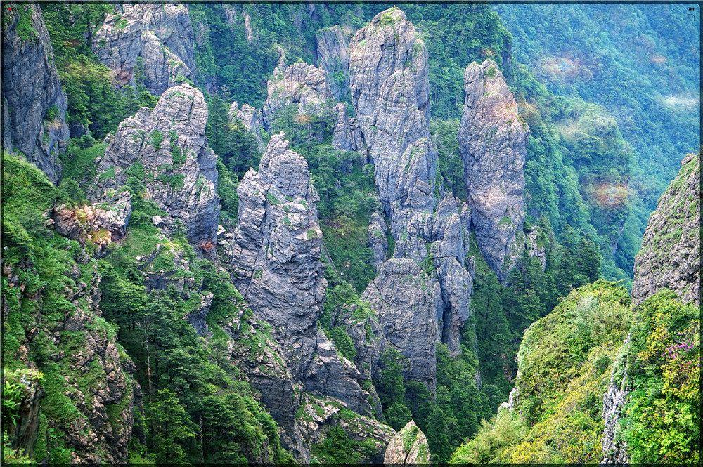 神农架记事 -郑伟华 九湖草暖觅野踪, 秘境奇翠生农神。 巴山清凉润万物, 三省景色入帘新。 神农架以原始、神秘闻名于世,区内山高谷深,林木茂密,气候复杂多变,四季景色迷人。独特的自然环境、人文历史,造就了极其丰富、珍贵的自然和人文景观,也孕育了景色宜人、钟灵毓秀的旅游环境。 地貌景观:主要有红石沟、长岩屋、红花营、神农顶、神农谷、阴峪河大峡谷、神农架群石槽河组地质奇观、大寨湾大峡谷、金丝燕洞等景观。水文景观:神农架山体高大,植被茂密,是一个巨大的储水库,山间溪流密布各条沟谷,深潭、激流湍滩、瀑布展示出别