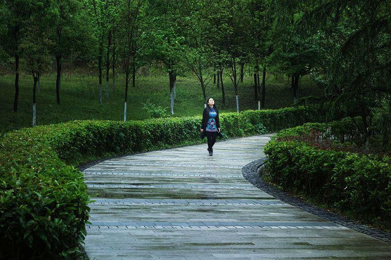 春游涪陵白鹤森林公园