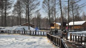 桃山森林冰雪玉温泉