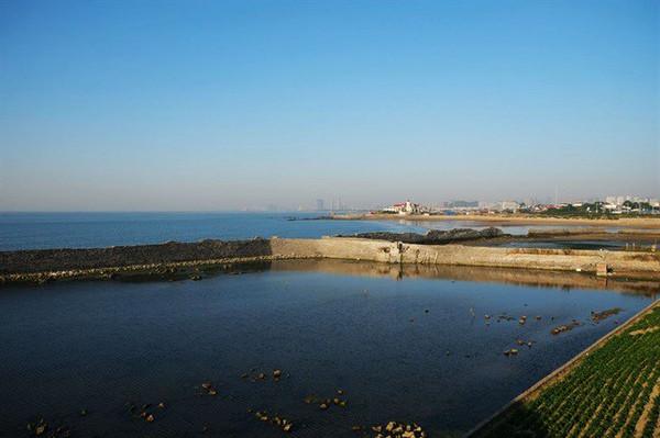 芙蓉岛上的这个水芙蓉大酒店看上去还是挺漂亮的,就是周边的渔港和