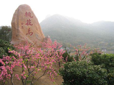 吉水桃花岛一日游攻略 看桃花朵朵开 - 赣县游记攻略