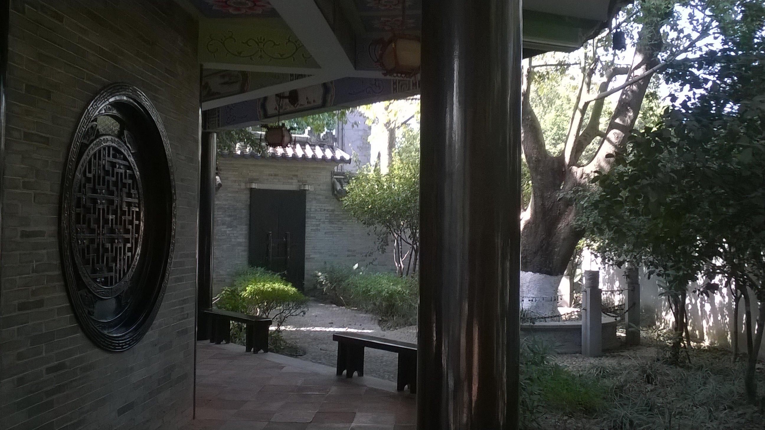 与粗壮的大树浓密的树叶相辅相成,构成中国南方庭院特有的韵味.