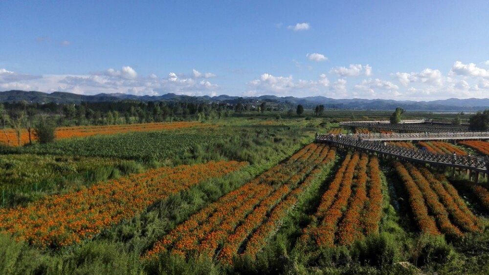贵州黄果树,草海,韭菜坪清凉休闲游 - 六盘水游记攻略