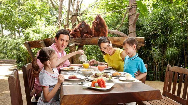 【携程攻略】新加坡新加坡日间动物园森林早餐自助餐