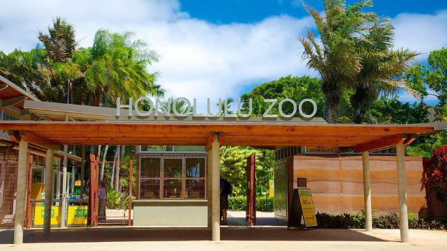 火奴鲁鲁动物园门票,檀香山火奴鲁鲁动物园攻略/地址
