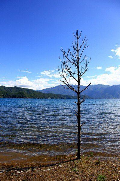 2015年的丽江泸沽湖之行,让我爱上了丽江