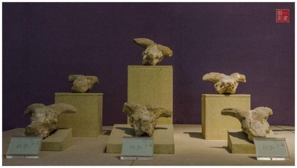 史前生命大荟萃-和政古动物化石博物馆