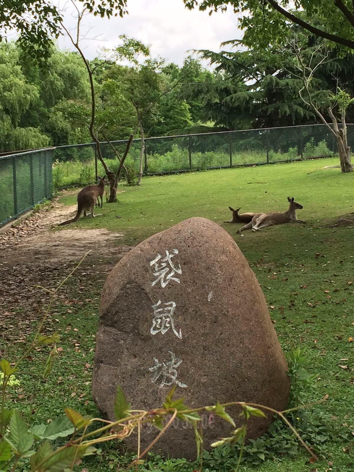 寻找与发现之旅@上海野生动物园