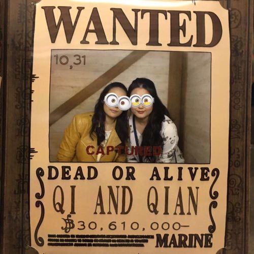 q小姐和q小姐的东京塔海贼世界大冒险