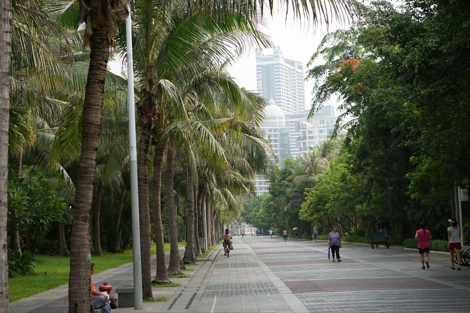南下游记:深圳-珠海-广州