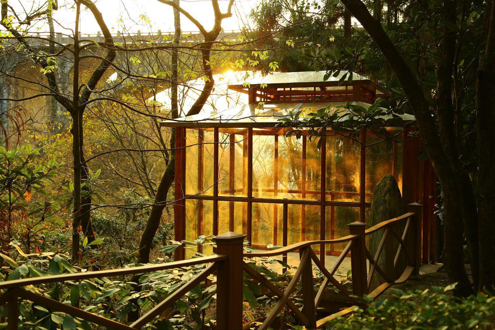 阳光洒在观景小房上,像童话世界的玻璃屋?图片