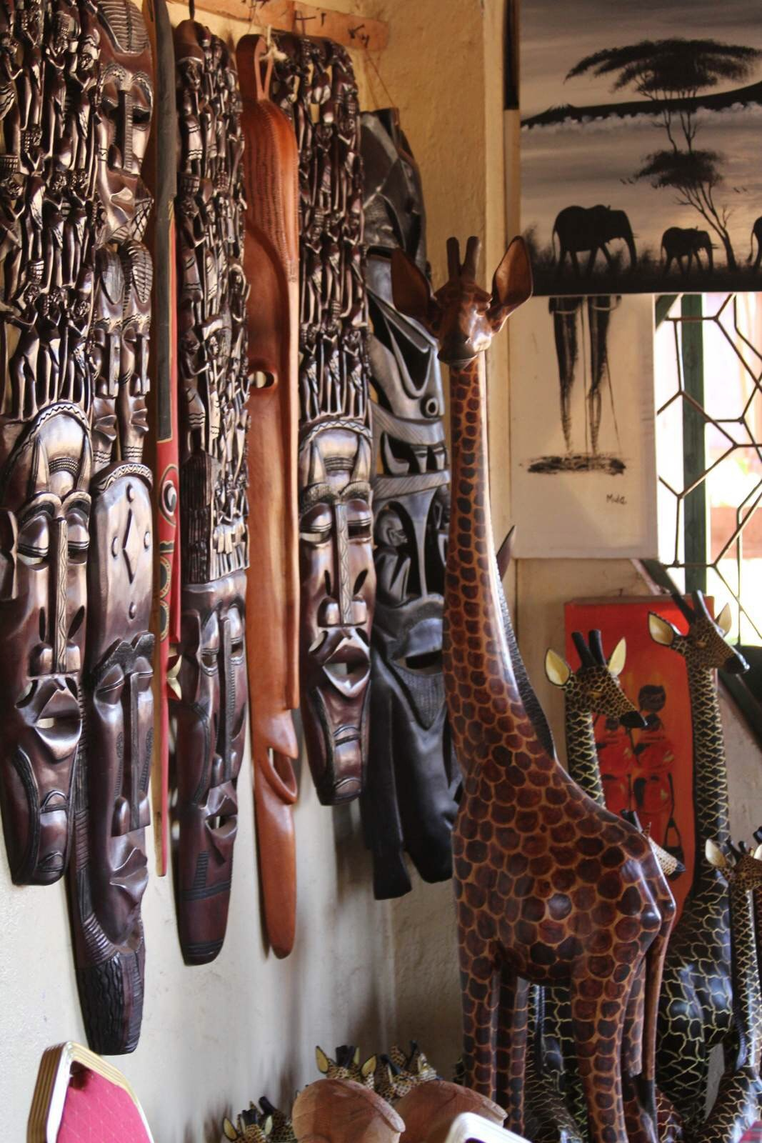 高清大片动物世界 肯尼亚 - 芝麻tu