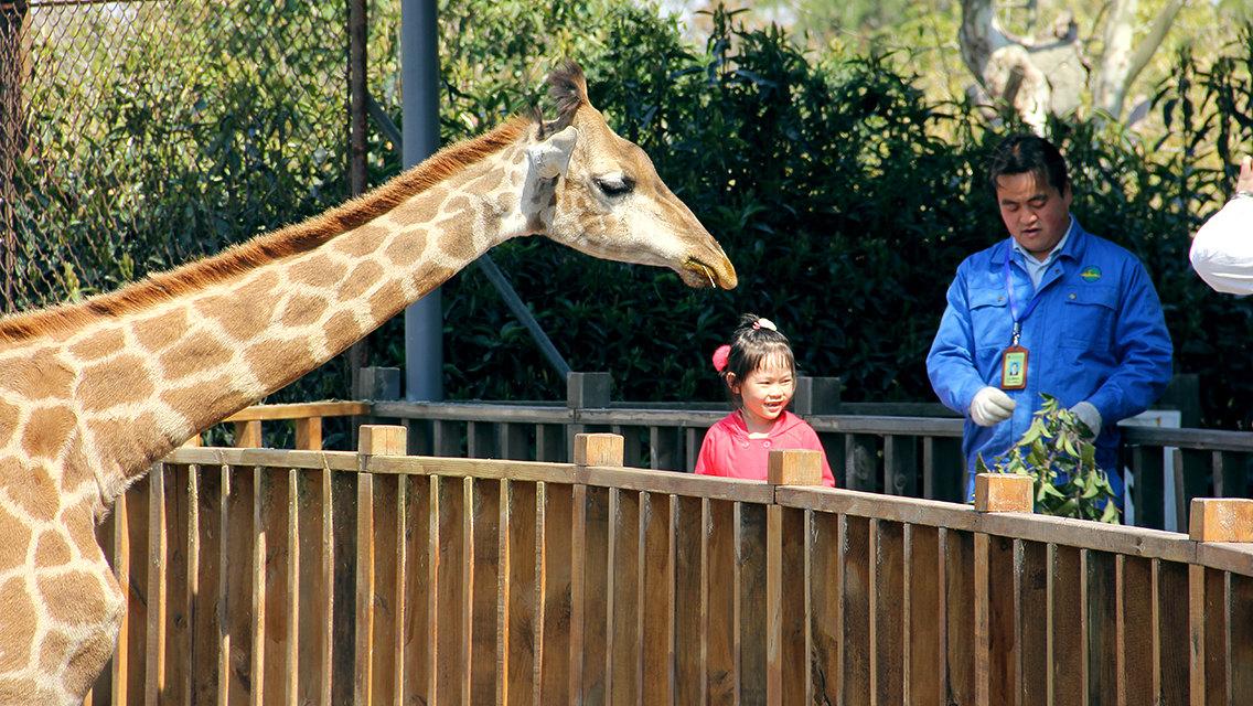 上海野生動物園    -3