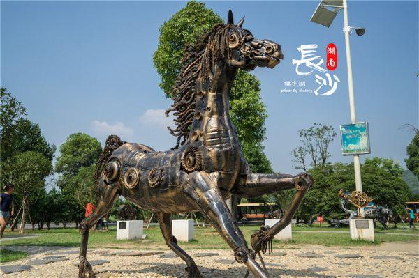 创意雕塑园,那种变形金刚造型的已经审美疲劳不感冒了,倒是这几个钢铁