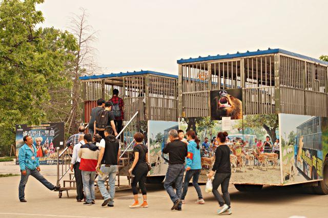 秦岭野生动物园动物展区分车入区和步行区两大部分