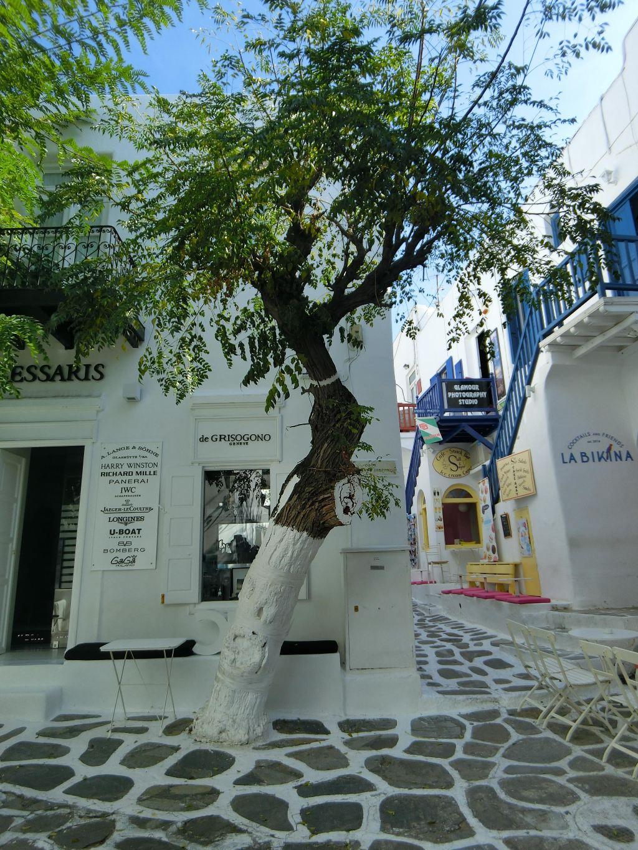 梦中的那抹希腊蓝--2015雅典