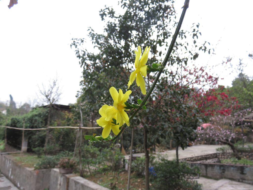 三圣乡红砂村,锦城湖