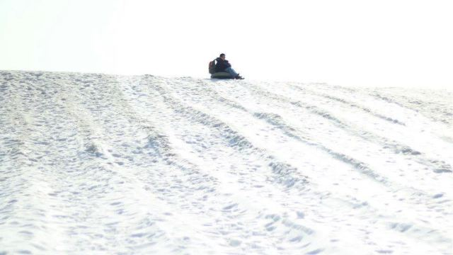 团泊湖乐乐岛冰雪嘉年华门票,静海团泊湖乐乐岛冰雪