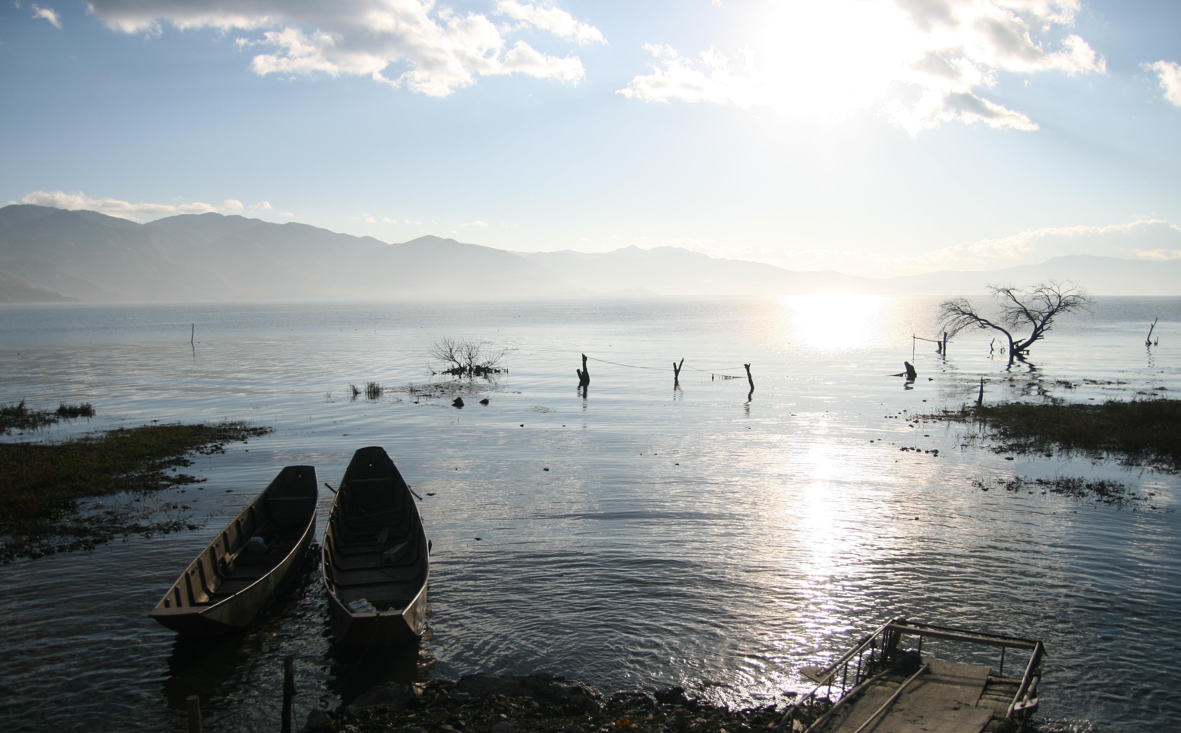 清晨的洱海烟雾缭绕,水清得把冬天的枯木倒映得清清