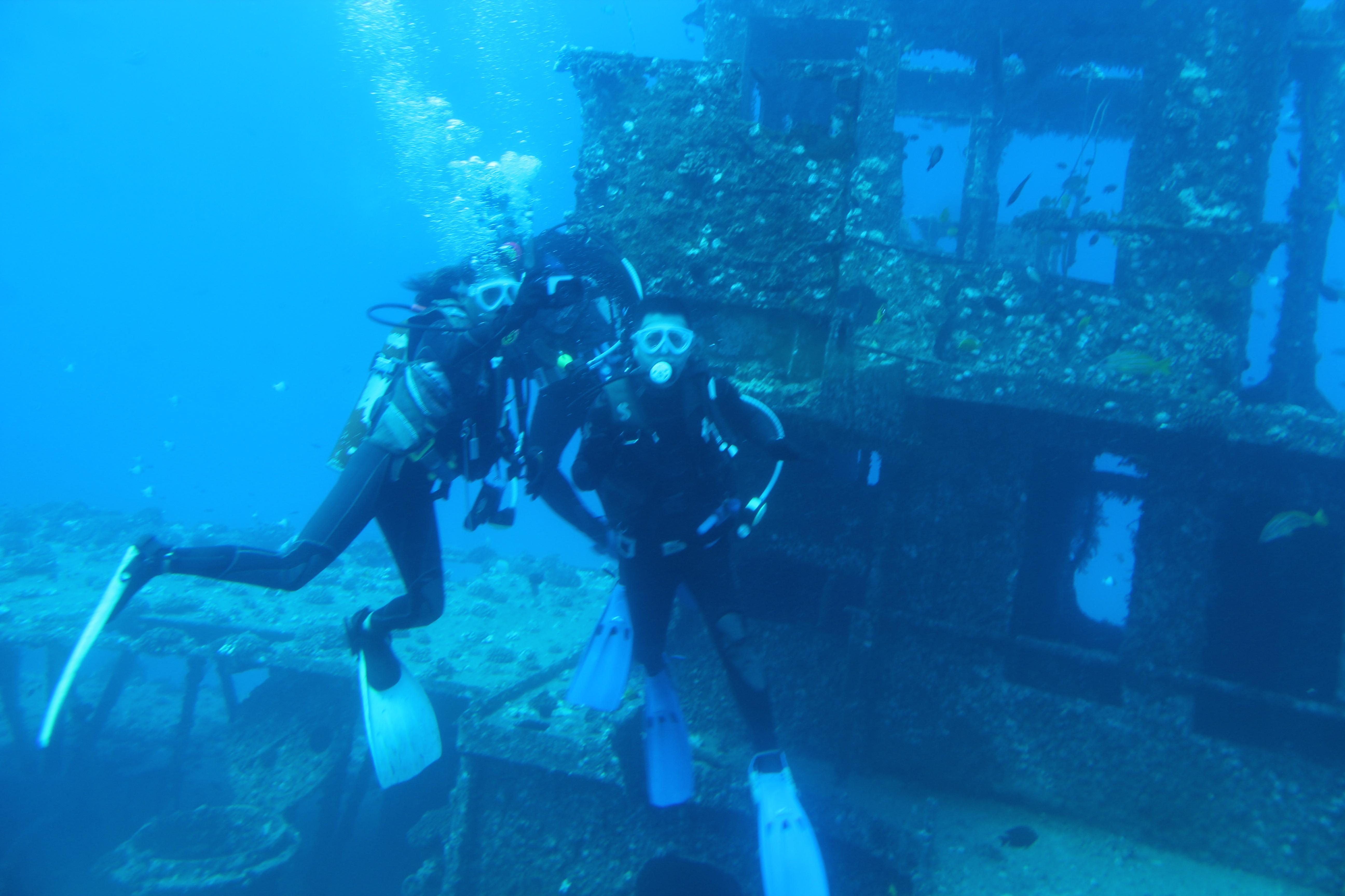 壁纸 海底 海底世界 海洋馆 水族馆 桌面 5184_3456
