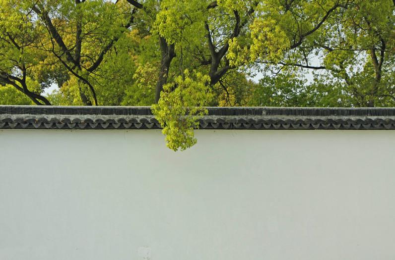 透窗在苏州园林中很多见,透过菱形窗可以看到外面的树木等,这样墙就不