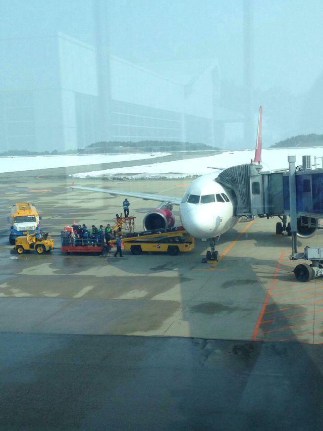 航班,开通的第一条国际航线就是到上海浦东机场的