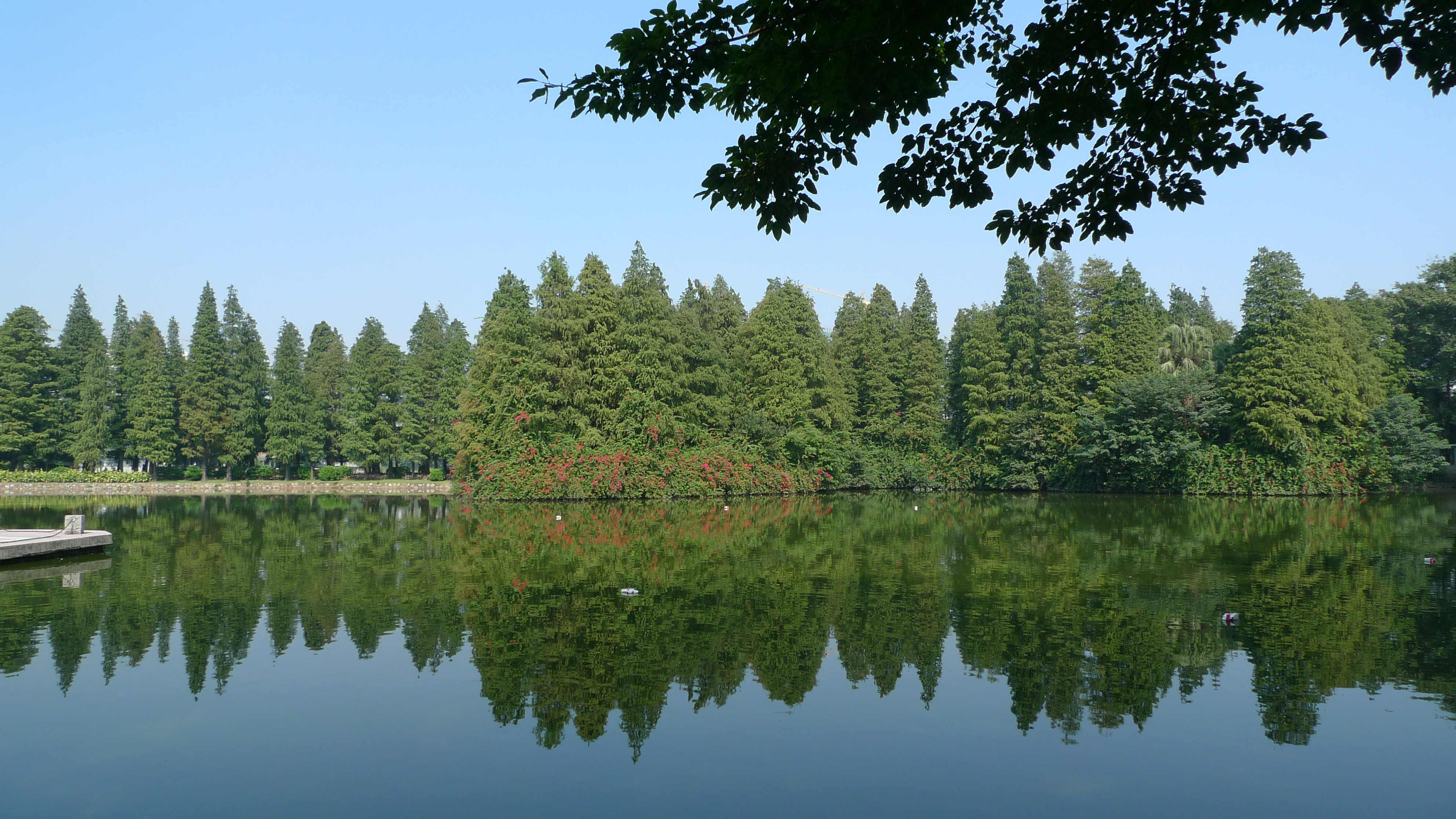 流花湖公园    -2