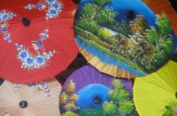 这里的手绘纸伞是泰国著名工艺品,手绘大部分是各种动物或花卉的图案