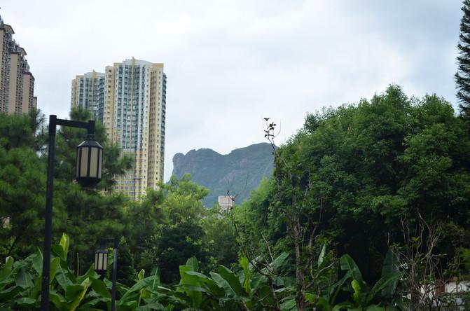 7月香港5日攻略自由行,攻略、v攻略实用美食超theinnerworld亲子图片