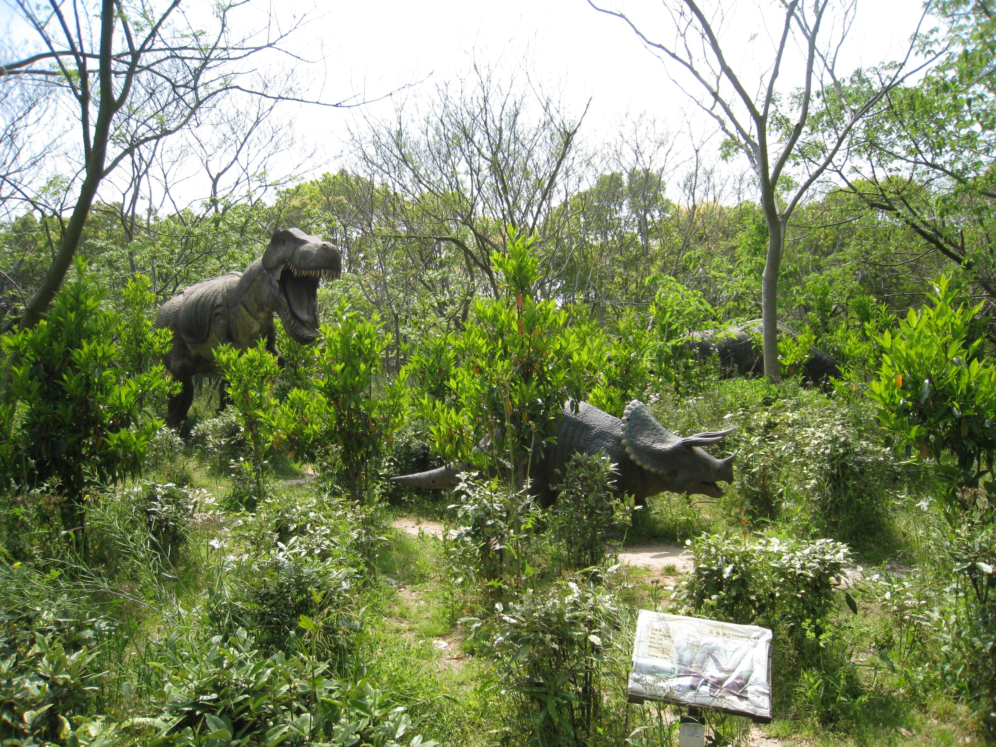 书院人家/滨海森林公园/海边自驾一日游