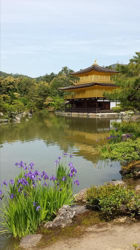手把手教你搭JR从大阪攻略凯越到京都ky遵义一日游酒店美食图片