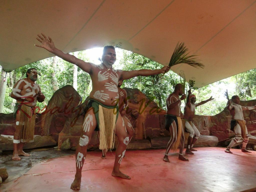 查普凯土著文化公园  Tjapukai Aboriginal Cultural Park   -3
