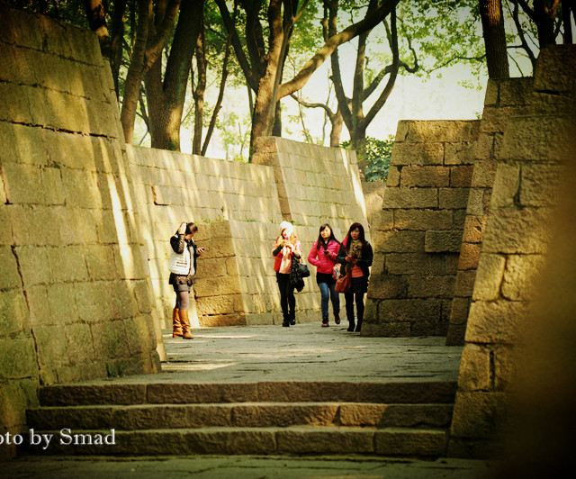 上海人游上海-松江方塔园
