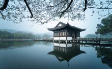 曲院风荷-杭州