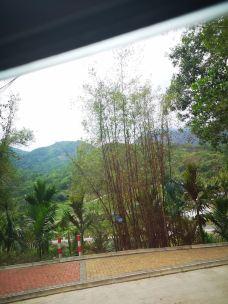 五指山热带雨林风景区-五指山-听雪听雪