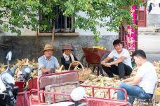 中心农贸市场-图木舒克-滇国剑客